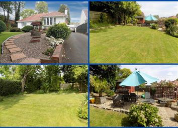 Thumbnail 3 bed detached bungalow for sale in Llys Nedd, Bryncoch, Neath, Neath Port Talbot.