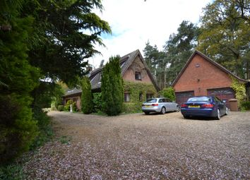 Thumbnail 5 bed property for sale in Morton On The Hill, Norwich