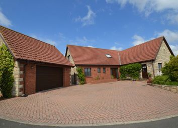 Thumbnail 5 bed detached bungalow for sale in Fiveacres, Wooler