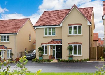 "Thumbnail 4 bed detached house for sale in ""The Juniper"" at Priory Fields, Wookey Hole Road, Wells, Somerset, Wells"