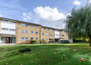 2 bed flat to rent in The Shimmings, Boxgrove Road, Guildford GU1