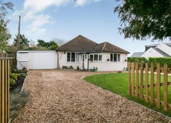 Thumbnail 3 bedroom bungalow for sale in Medstead, Alton, Hampshire