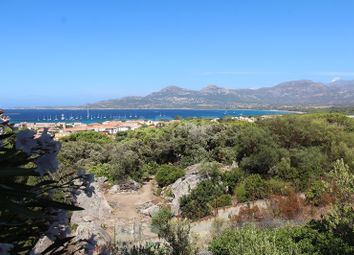 Thumbnail 8 bed property for sale in Calvi