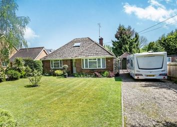 Thumbnail 2 bed detached bungalow for sale in Reading Road, Chineham, Basingstoke
