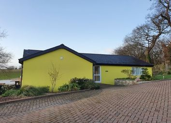 Thumbnail 2 bed detached bungalow to rent in Connybeare Lane, Newton Abbot
