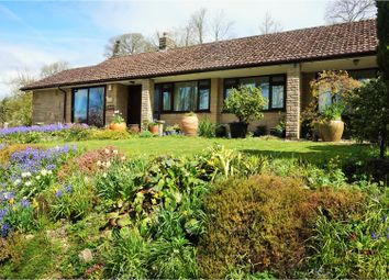 Thumbnail 3 bed detached bungalow for sale in Winterbourne Steepleton, Dorchester