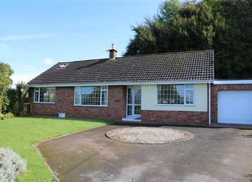 Thumbnail 3 bed detached house for sale in Linway, Walford, Ross-On-Wye