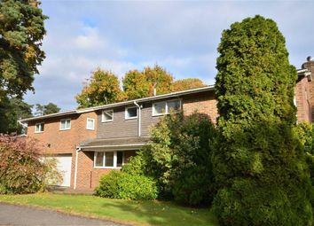 Thumbnail 5 bed detached house for sale in Bourne Firs, Lower Bourne, Farnham