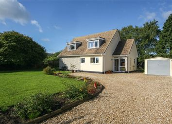 Thumbnail 4 bedroom detached house for sale in Pine Lodge, 4 Ashcott Road, Meare, Glastonbury, Somerset