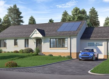 Thumbnail 3 bed detached bungalow for sale in The Glenbay, Maple Grove, James Street, Blairgowrie, Perth And Kinross