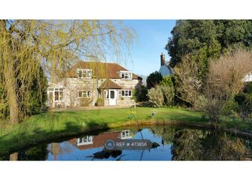 Thumbnail 4 bed detached house to rent in Lower Stoneham, Lewes
