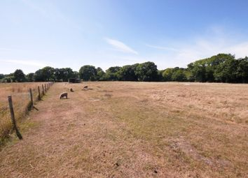 Thumbnail Land for sale in Silver Street, Hordle, Lymington, Hampshire