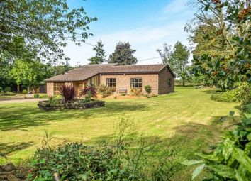 Thumbnail 4 bed detached house for sale in Tunstead, Norwich, Norfolk