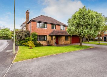 Thumbnail 4 bed detached house to rent in Bonners Field, Bentley, Farnham
