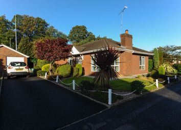 Thumbnail 3 bed bungalow for sale in Finchley Vale, Belfast