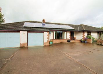 Thumbnail 4 bed detached bungalow for sale in Cuddy Lonning, Wigton