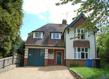 Thumbnail 4 bed detached house for sale in Paget Road, Ipswich