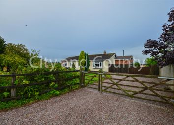 Thumbnail 5 bed detached bungalow for sale in Gilded Way, Oxcroft Bank, Whaplode Drove, Spalding