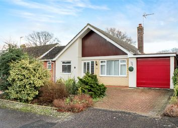 Thumbnail 4 bed detached bungalow for sale in Oaklands, Framingham Earl, Norwich, Norfolk