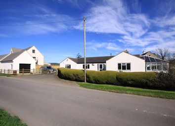 Thumbnail 4 bed detached bungalow for sale in Seven Waters, Leonard Stanley, Stonehouse