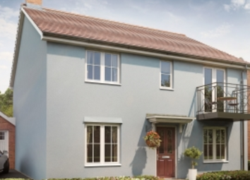 Thumbnail 4 bedroom detached house for sale in Kirby Road, Walton On The Naze, Essex