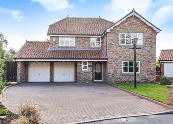 Thumbnail 4 bed detached house for sale in Holly Beck, Hayton, York