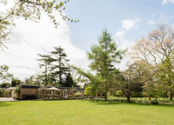 Thumbnail 5 bed detached house for sale in Ardleigh, Colchester, Essex