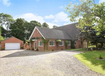 Thumbnail 5 bed detached house for sale in Peppin Lane, Fotherby, Louth