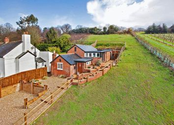 Thumbnail 3 bed detached house for sale in Dalditch Lane, Budleigh Salterton