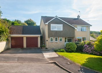 Thumbnail 4 bed detached house for sale in Ivy Bank Park, Entry Hill, Bath