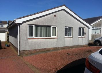 Thumbnail 3 bed bungalow to rent in Smiddy Loan, Chapelton, By Strathaven