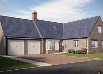Thumbnail 4 bed detached bungalow for sale in Hampton Drive, Kings Sutton, Banbury