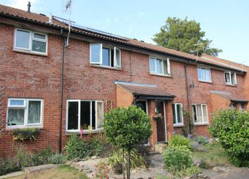 Thumbnail 2 bed terraced house to rent in Appledown Close, Alresford, Hampshire