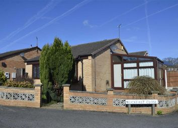 Thumbnail 2 bed detached bungalow for sale in Buckfast Close, Swanwick, Alfreton