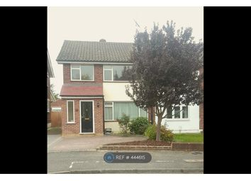 Thumbnail 3 bed semi-detached house to rent in Hedingham Road, Essex