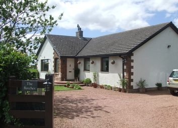 Thumbnail 4 bed detached bungalow for sale in Dornock, Annan