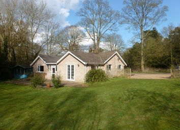 Thumbnail 3 bed detached bungalow for sale in Bungay Road, Beccles