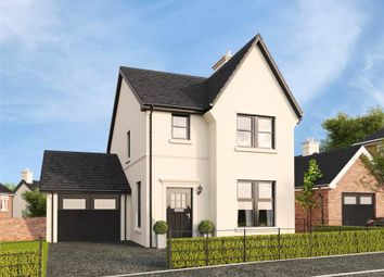 Thumbnail 3 bedroom detached house for sale in 20, Belvoir Park, Belfast
