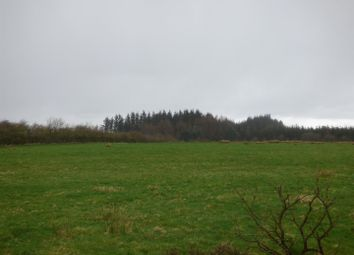 Thumbnail Land for sale in Abergorlech Road, Horeb, Carmarthen