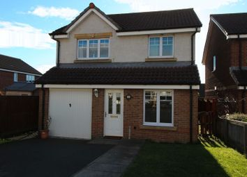 Thumbnail 3 Bed Detached House To Rent In Robert Philp Road Kirkcaldy