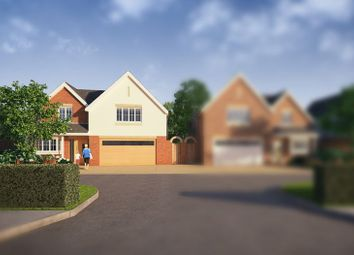 Thumbnail 5 bed detached house for sale in Main Road, Nutbourne, Chichester