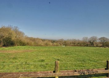 Thumbnail 2 bed semi-detached house for sale in Highampton, Beaworthy