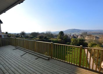 Thumbnail 4 bed detached bungalow for sale in Pine Grove, Honiton, Devon