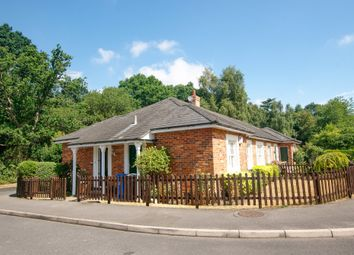 Thumbnail 3 bed semi-detached bungalow for sale in Winchfield Court, Pale Lane, Winchfield