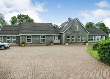 Thumbnail 5 bed detached house for sale in Scolboa Meadow, Antrim