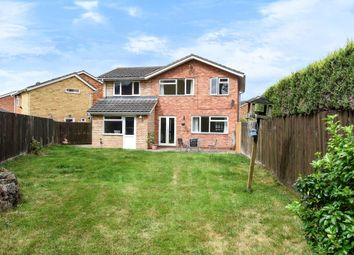 Thumbnail 4 bed detached house to rent in Hampton Dene, Hereford
