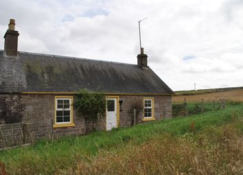 Thumbnail 2 bed semi-detached house to rent in Idvies, Forfar