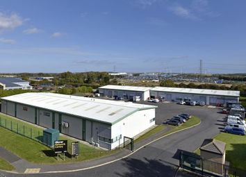 Thumbnail Industrial to let in 12 Glover Network And Trade Centre, Glover Industrial Estate, Washington