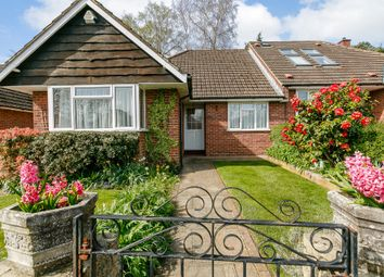 Thumbnail 3 bed semi-detached bungalow to rent in Westerfolds Close, Woking