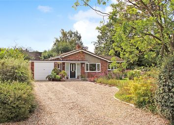 Thumbnail 3 bed detached bungalow for sale in Kingswood Close, Brooke, Norwich, Norfolk